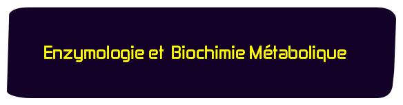 Enzymologie et Biochimie Metabolique svi s4