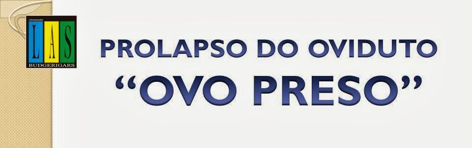 """""""OVO PRESO"""""""