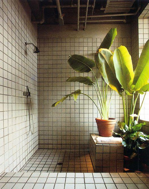 La Fabrique A Deco Des Plantes Dans La Salle De Bain Inspiration