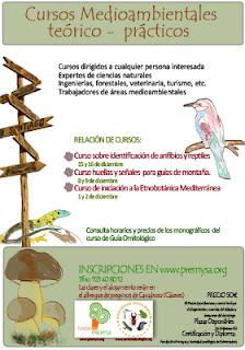 cartel anunciador cursos