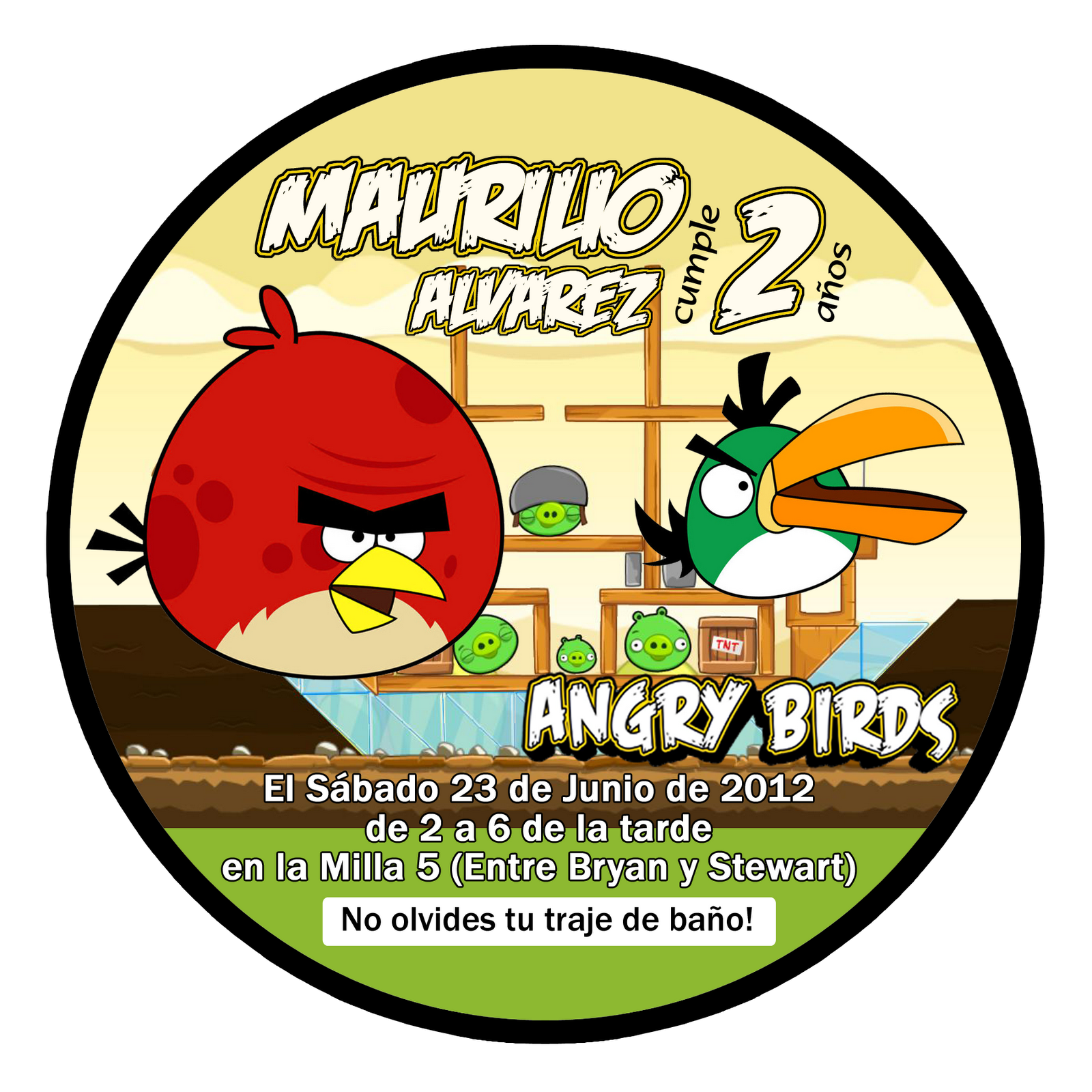 The Childrens Zone Digi Designs: Invitaciones para paletas Angry Birds