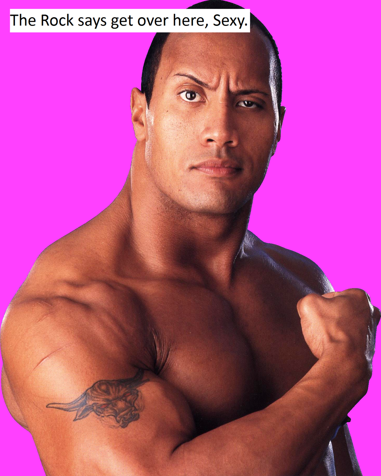 a biography of american wrestling champion dwayne johnson Wayde douglas bowles (august 24, 1944) is a retired canadian professional wrestler best known by his ring name rocky johnson quite popular in his own right in the 1970s and 1980s, he is also known for being the father of actor and former wrestler dwayne &quotthe rock&quot johnson.