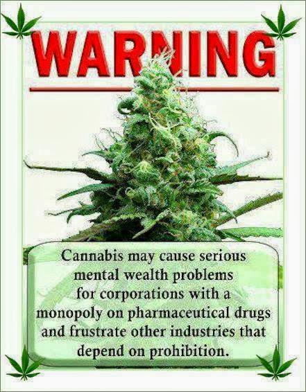 marihuana, mota