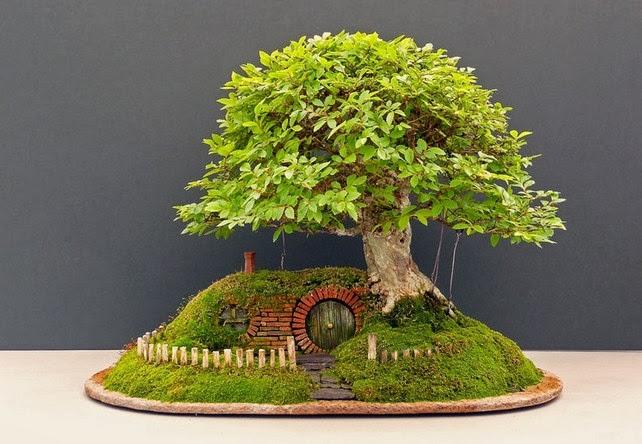 Bonsai Berbentuk Seperti Rumah Hobbit