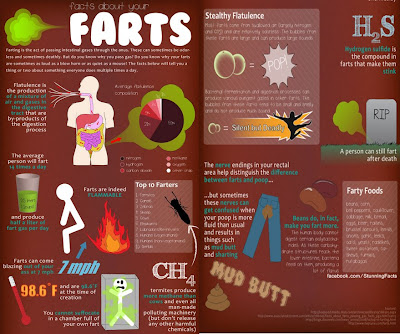 FACTS ABOUT FART