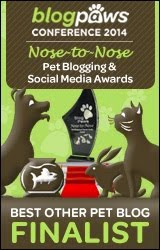 Blogpaws Finalist