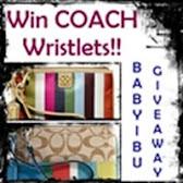 Coach Wristlet GA Baby Ibu