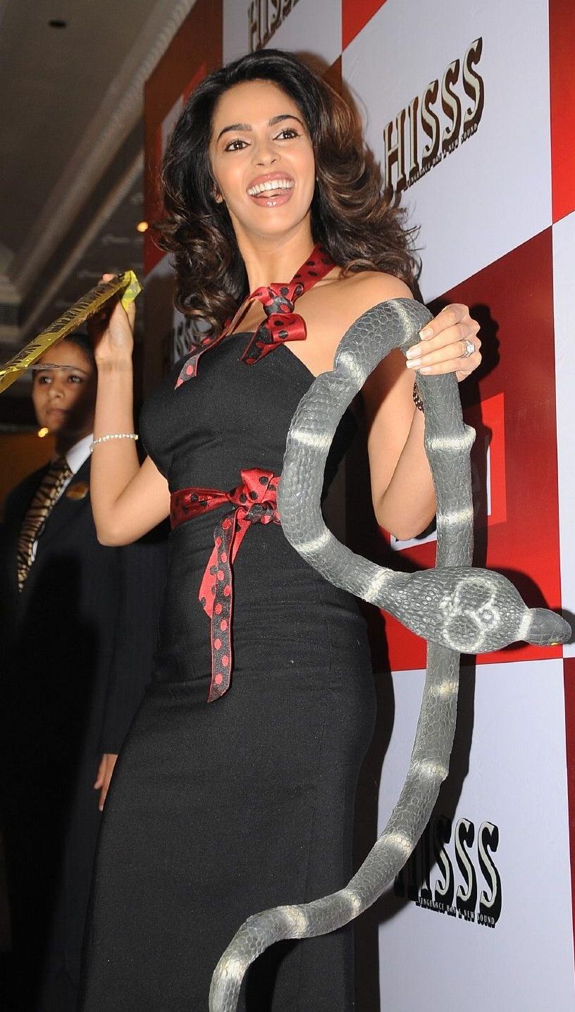 Latest Hot Adorable Hot Photos of Mallika Sherawat Hot