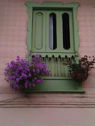 Balcones Salamineños