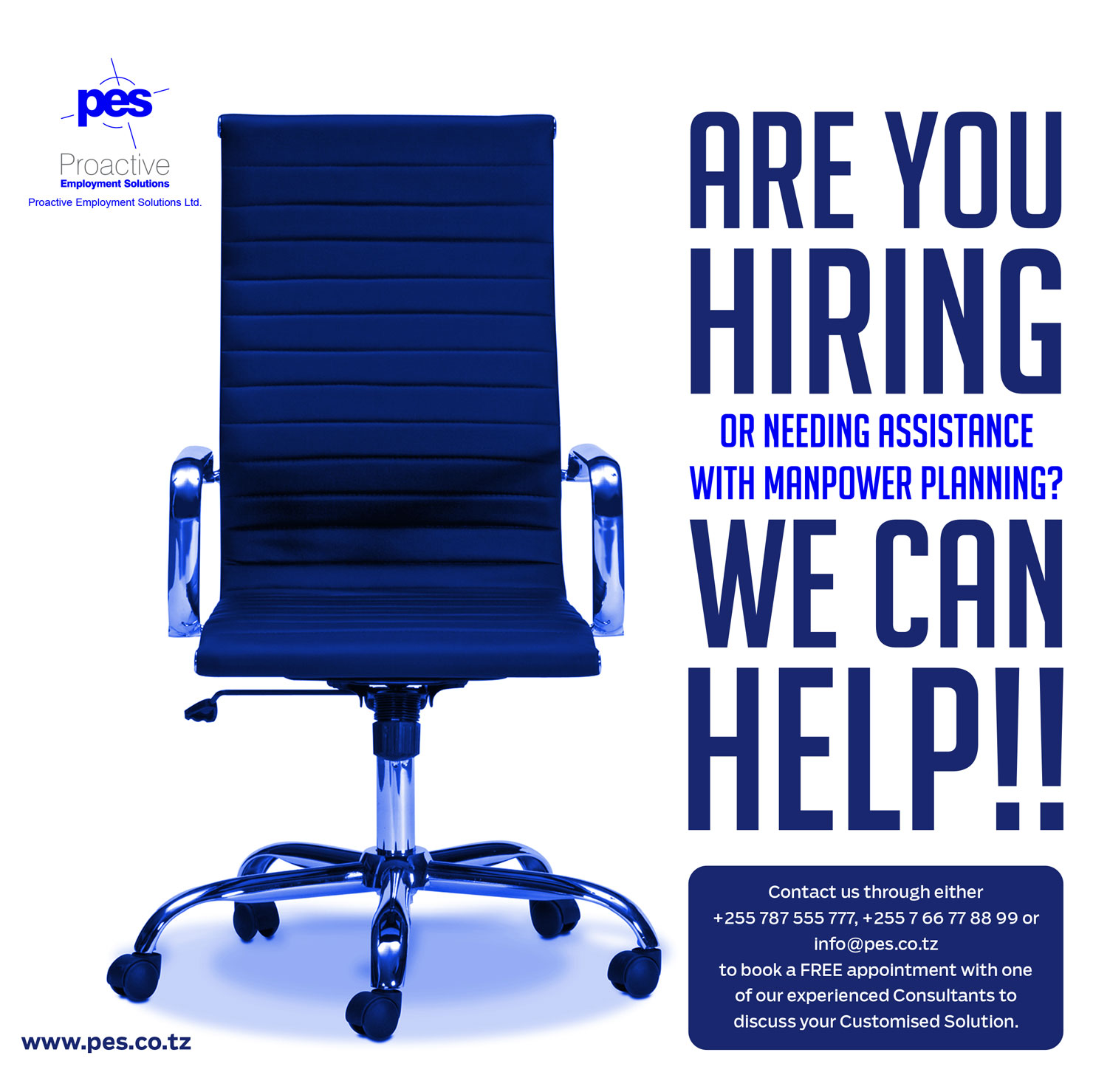 PROACTIVE EMPLOYMENT SOLUTIONS (PES)