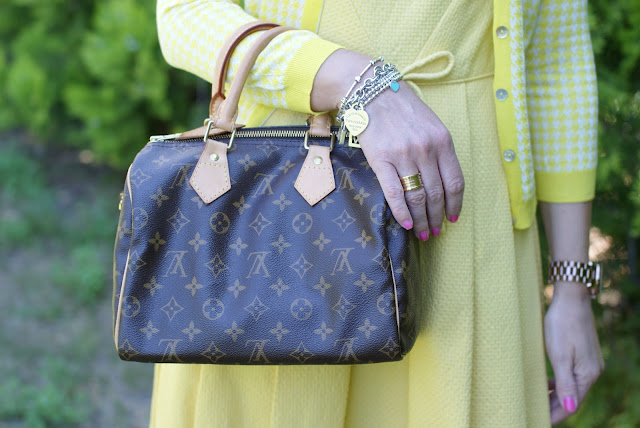 Louis Vuitton Speedy 25 monogram, Fashion and Cookies