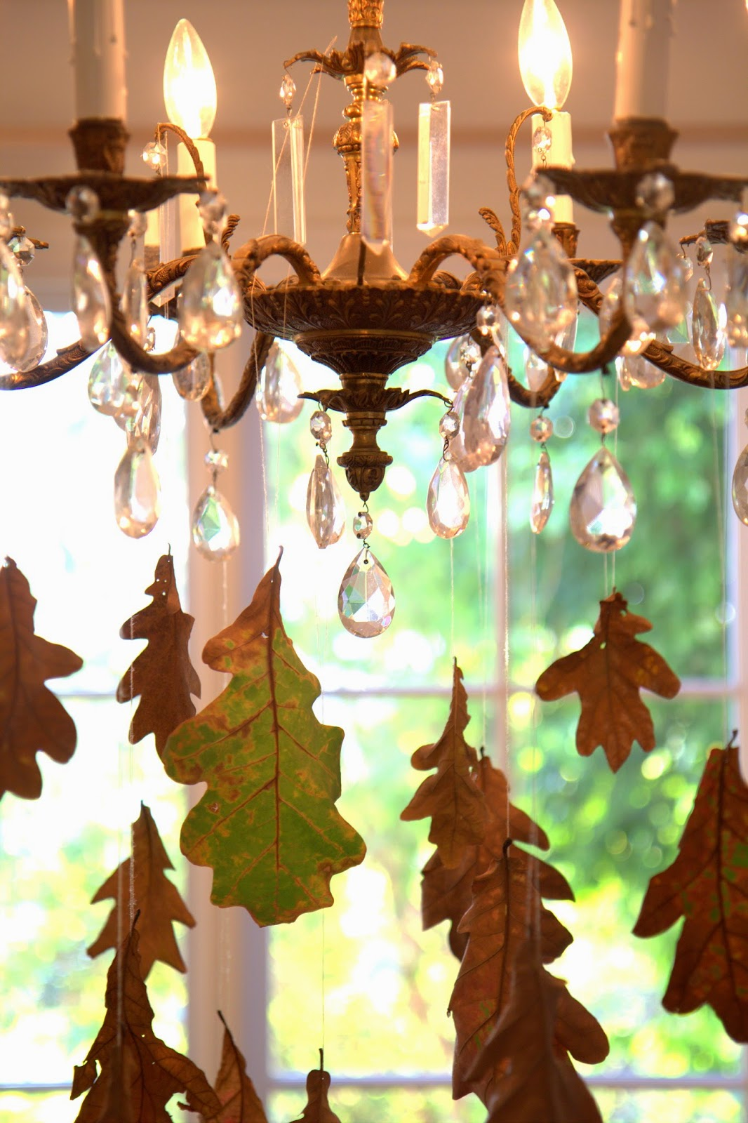 Falling Leaves from My Chandelier