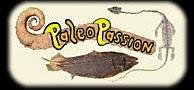 Paléo passion