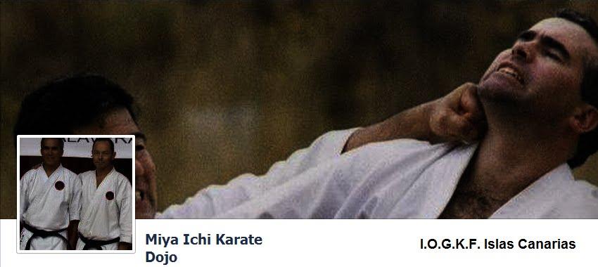 Miya Ichi Karate Dojo