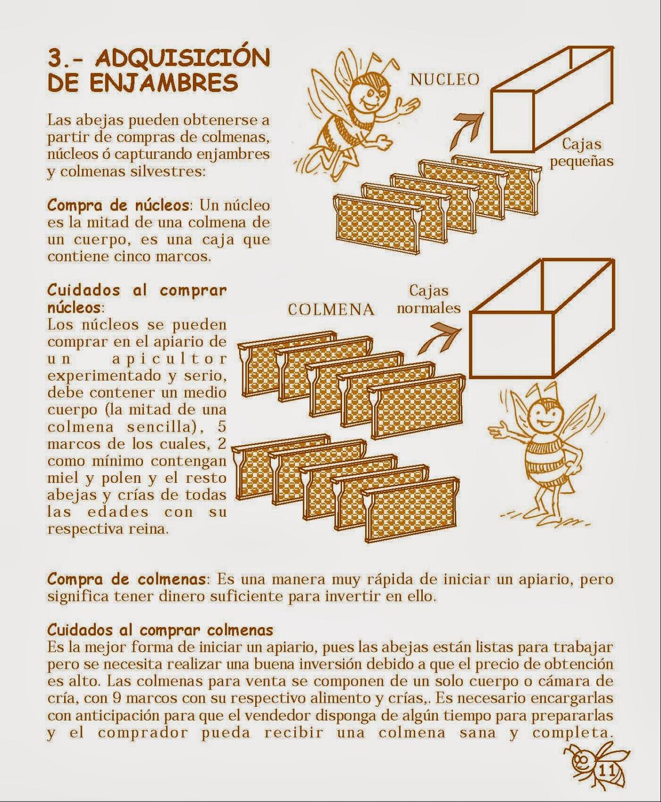 La Familia de la Apicultura - The Beekeeping of Family: 2013
