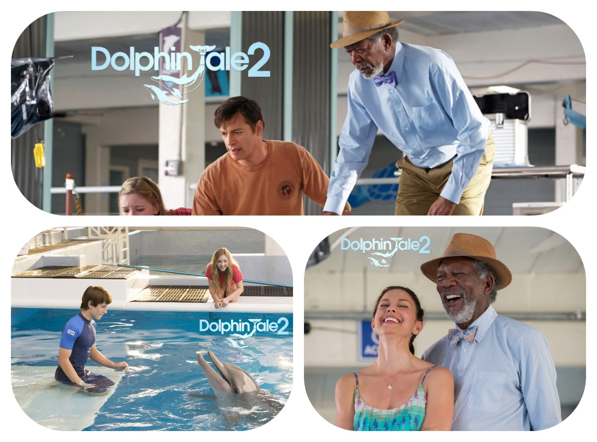 Dolphin Tale 2 Movie HD Trailer Captures