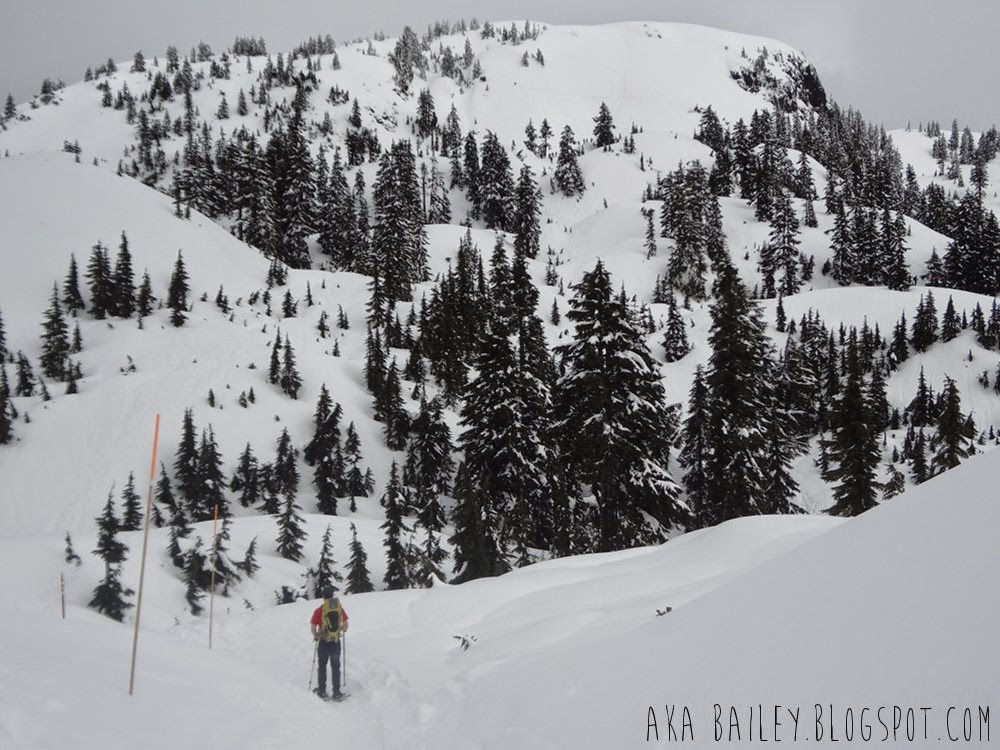 April hike on Mt. Seymour in North Vancouver