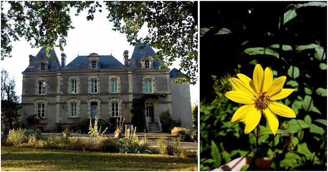 Château du Beugnon, Angers, château, fleurs, terra botanica, bullelodie