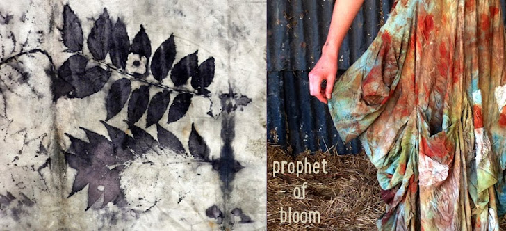prophet of bloom