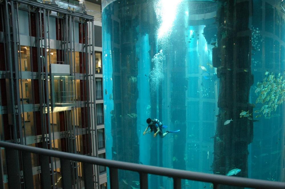 Aquário gigante onde vivem mais de 1500 peixes que é parte do poço de um elevador