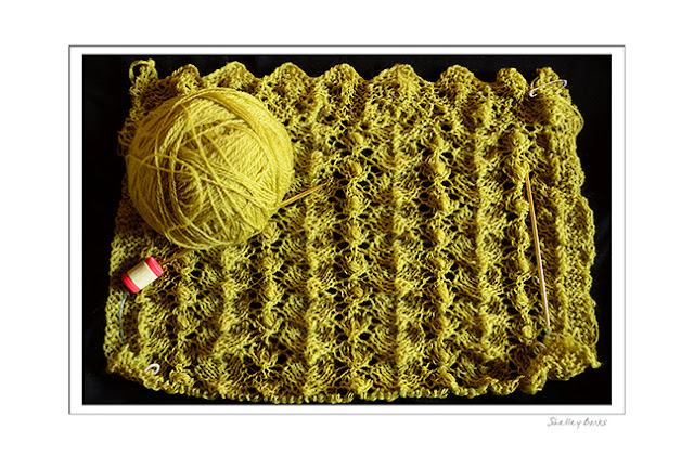 Inching to the end of a delicate lace wool scarf.   © SB  Copyright Shelley Banks, all rights reserved.