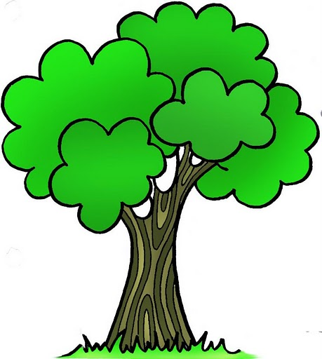 Imagenes Color De Arboles on Family Tree For Kids Template