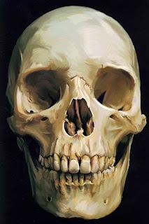 digital painting of a skull by Tony Mark