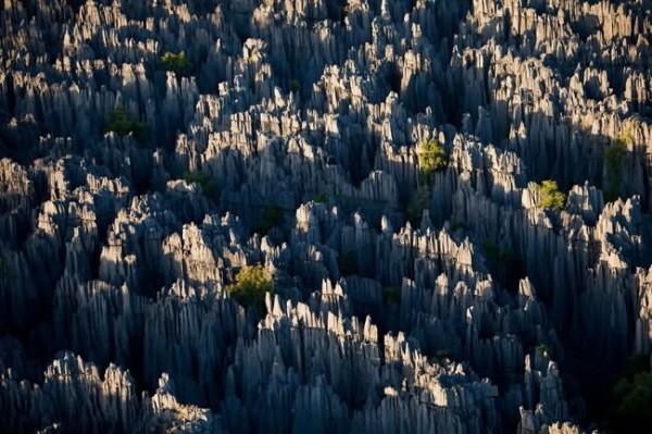 أماكن ساحرة نحتتها الطبيعة Stone-Forest-Madagas