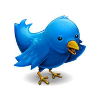 http://2.bp.blogspot.com/-o2J1vnXg61o/TabCSf4ZQgI/AAAAAAAAAnE/-VWCez0ROtI/s1600/tweeter-bird.jpg