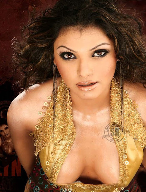 Sherlyn chopra hot sexy