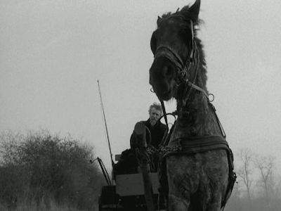 The Turin Horse, The Master Rides the Stubborn Horse in the Gale Storm, Directed by Bela Tarr