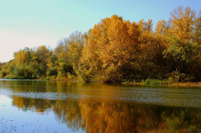 Река Аксай в ноябре