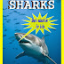 Sharks Life - Free Kindle Non-Fiction