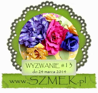 http://szmek-bloguje.blogspot.ie/2014/03/13-wyzwanie-u-szmeka.html