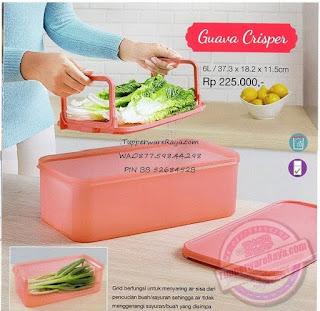 Tupperware Promo Juli 2015 Guava Crisper