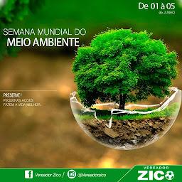 Vereador Zico