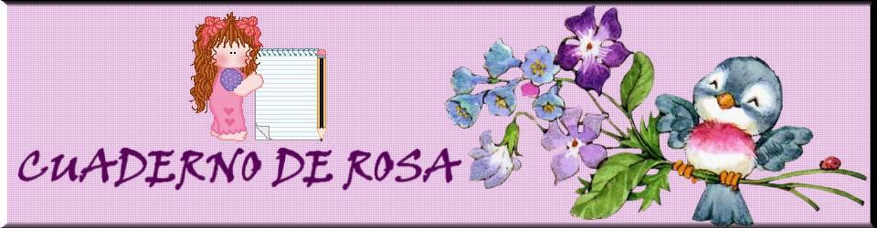 CUADERNO DE ROSA