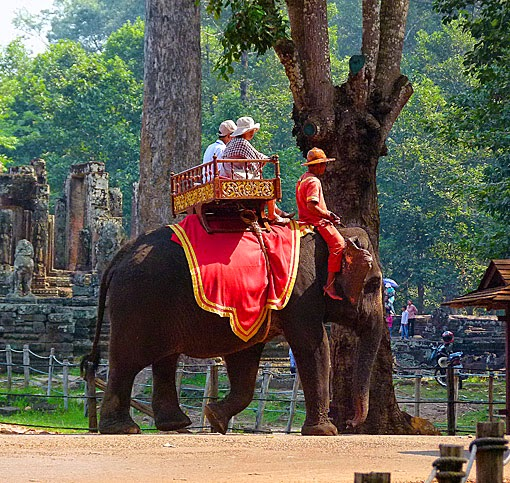 Cambodia Trips with the Elephant