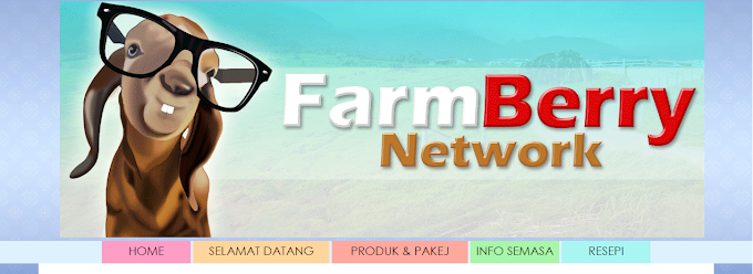 Tempahan Design Blog FarmBerry Network