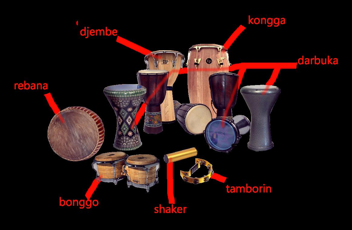 alat muzik selalunya perkesyen ni terdiri dari alat muzik yang