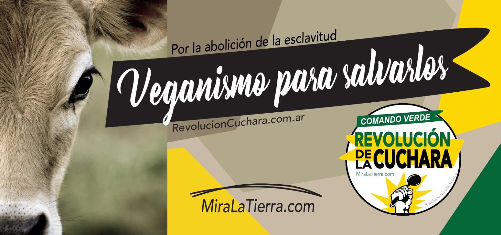 LA REVOLUCIÓN DE LA CUCHARA Argentina | Pág Oficial
