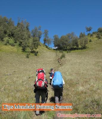 Tips Mendaki Gunung Semeru Bagi Pemula dan Senior