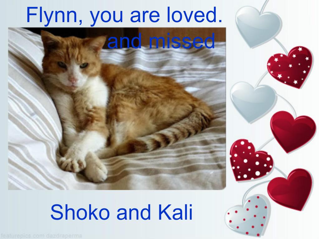 Thank you Shoko and Kali