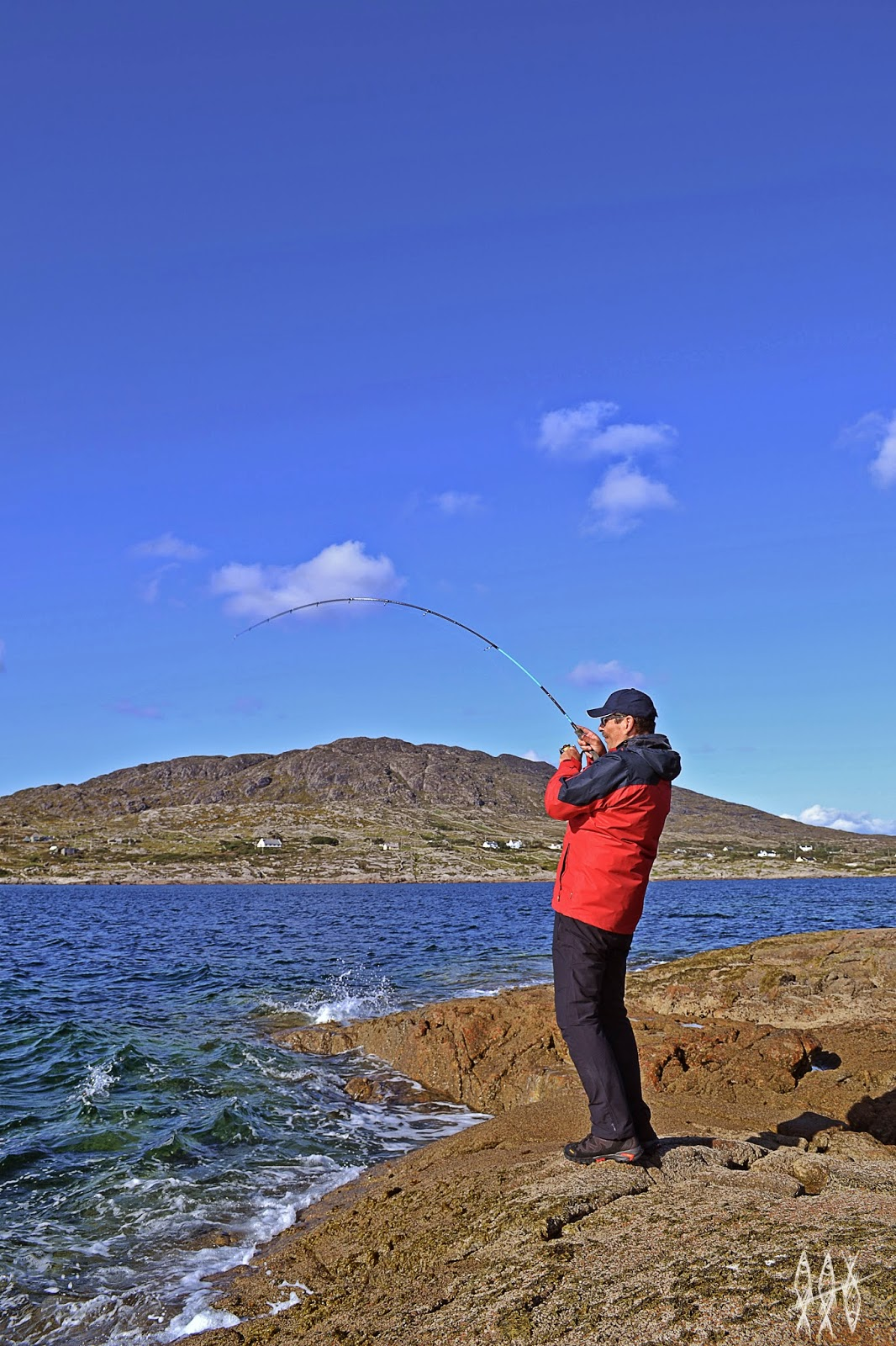 Wrasse fishing Ireland Connemara