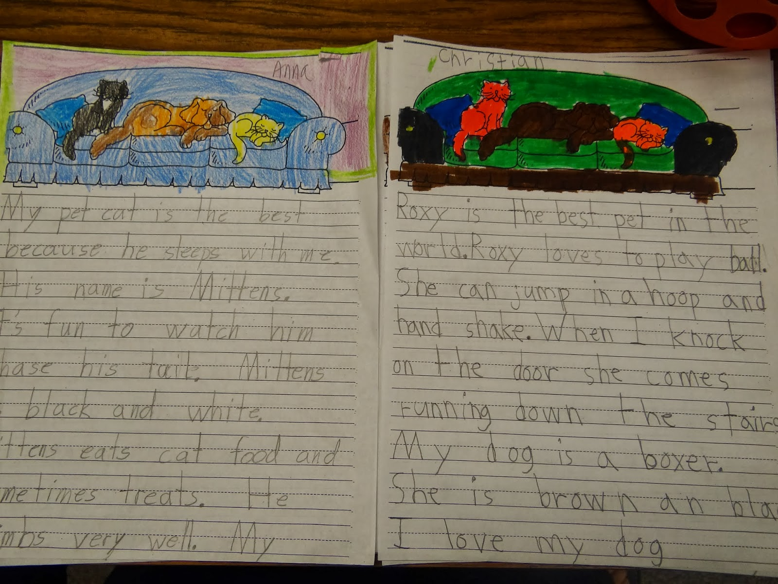 patties classroom reading streets tara and tiree and favorite persuasive essays on why our pets are the best