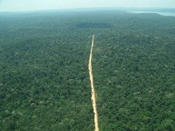 Amazônia/Brasil