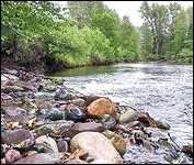 My Bulkley River 3