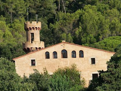 Detall del Castell de Fluvià