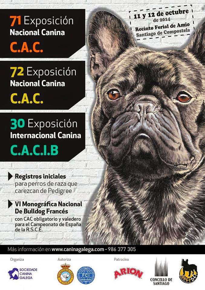 Carteles exposiciones para la Sociedad Canina Gallega