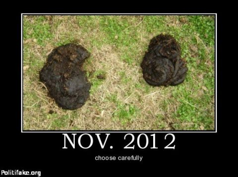 Obama on the left, Romney on the right, take your pick!